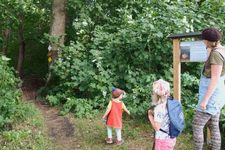 Young adventure's nature trail